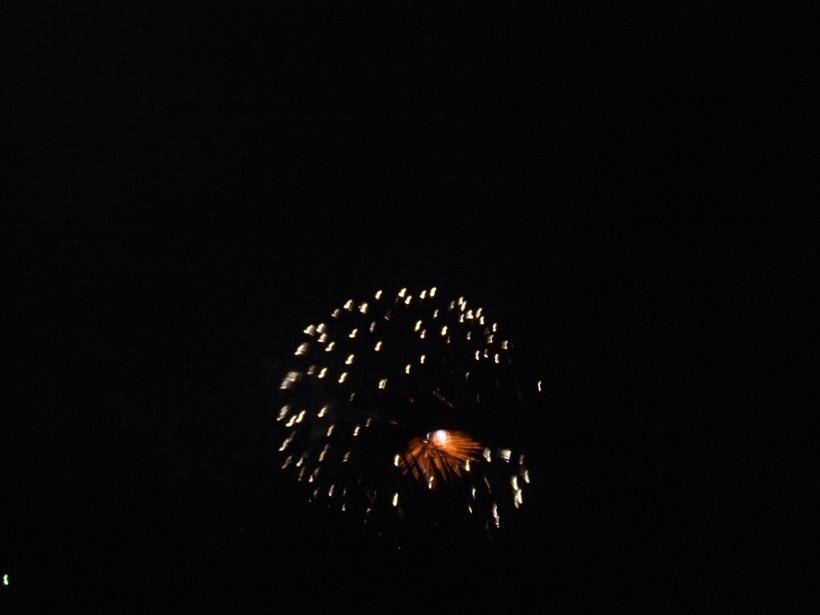2008_1116fireworks0006